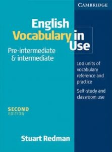 English Vocabulary in Use: Pre-Intermediate & Intermediate (2nd edition)